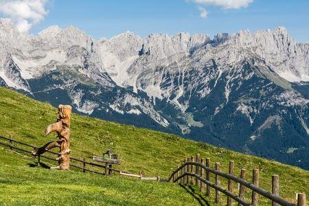 Detektiv Tirol